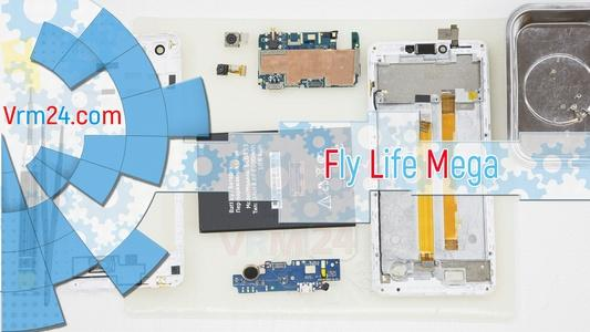 Technical review Fly Life Mega